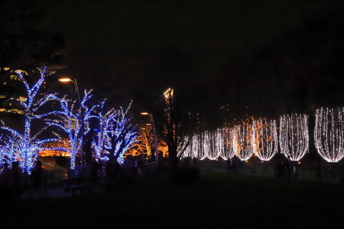 【MIDTOWN CHRISTMAS / スターライトガーデン 2018】_f0348831_10310525.jpg
