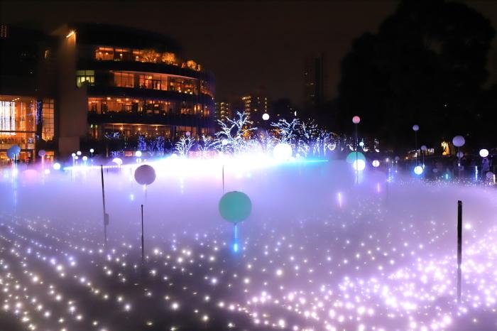 【MIDTOWN CHRISTMAS / スターライトガーデン 2018】_f0348831_10311783.jpg