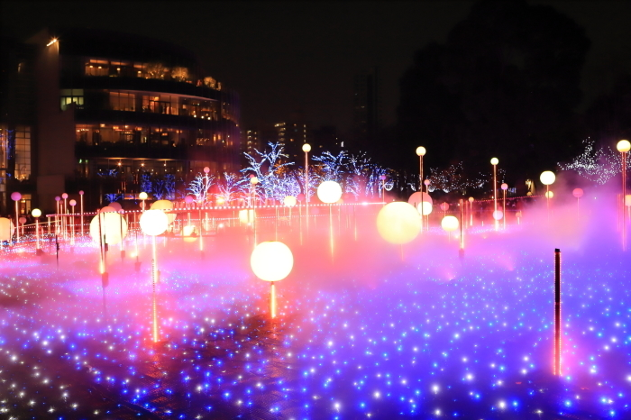 【MIDTOWN CHRISTMAS / スターライトガーデン 2018】_f0348831_10311812.jpg