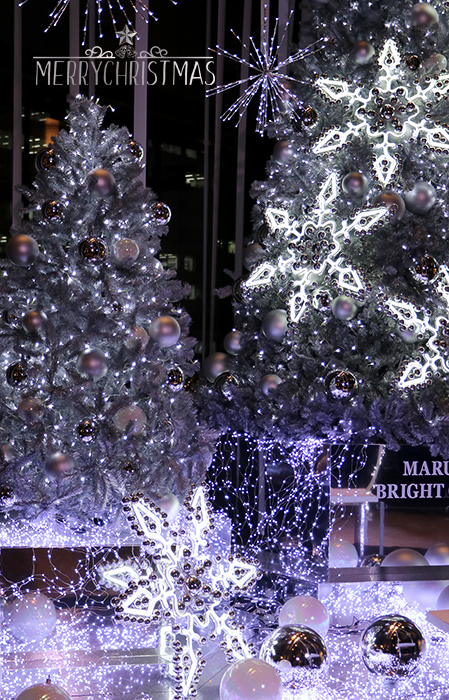 Happy・Christmas_b0049843_954569.jpg