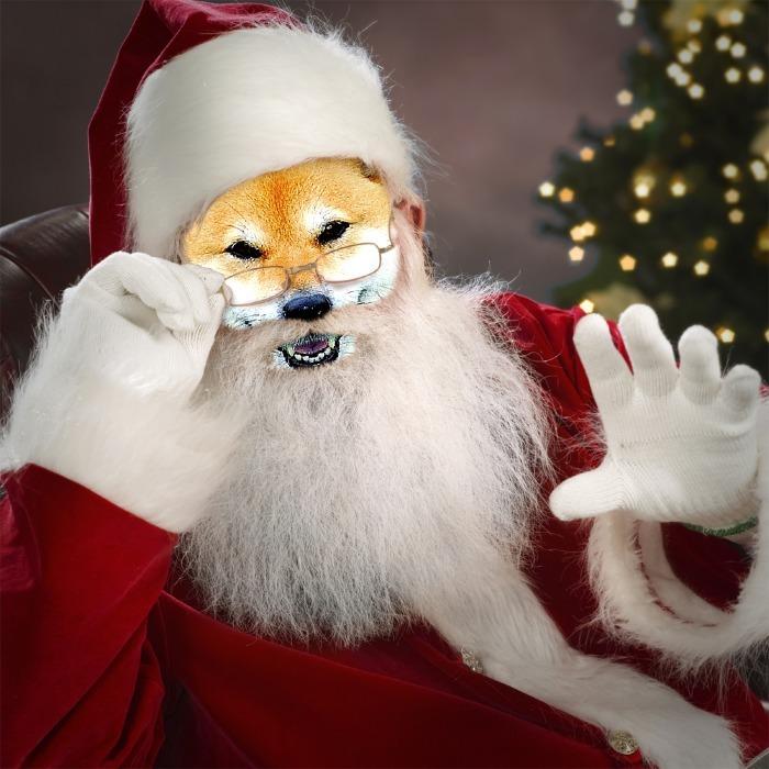 Merry Christmas_b0314043_07394745.jpg