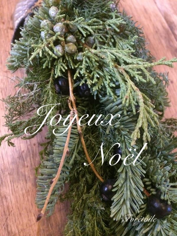 Joyeux Noël_f0377243_12480064.jpg
