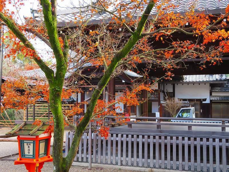 八坂神社は正月準備20181223_e0237645_23542144.jpg