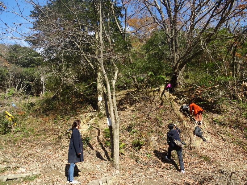 孝子の森で「里山クリスマス」(ピザ職人体験&ケーキつくり)_c0108460_20024150.jpg