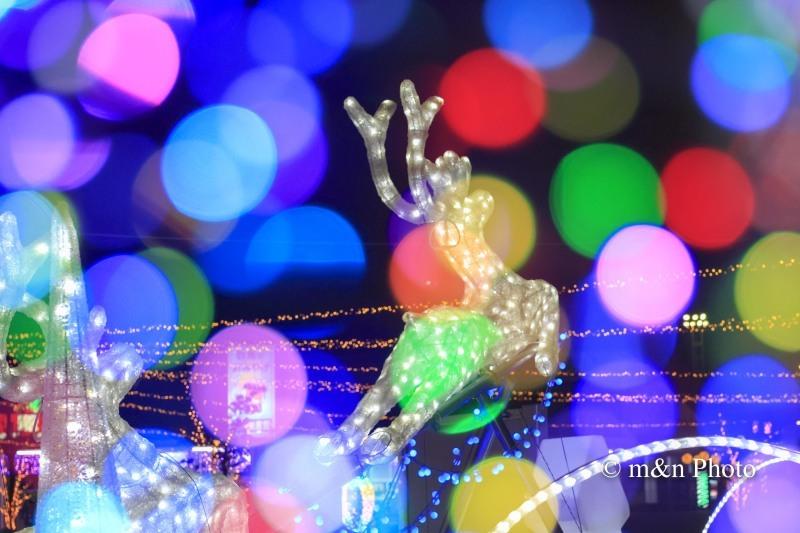 クリスマスイブ_e0321360_17483855.jpg