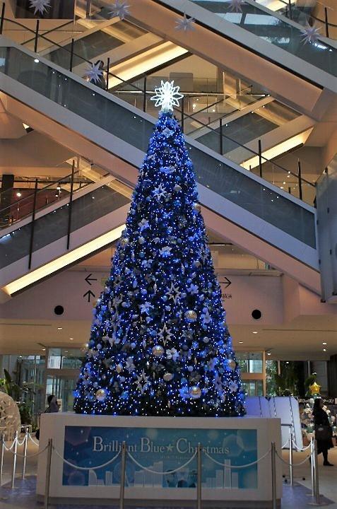 みなとみらいのクリスマスツリー_a0355365_12213658.jpg