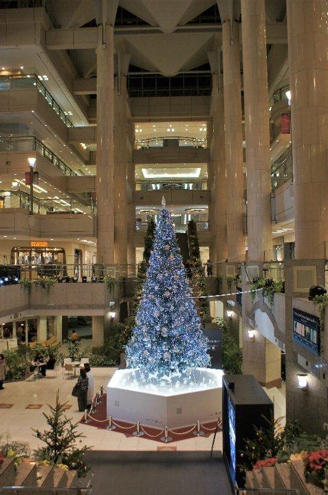 みなとみらいのクリスマスツリー_a0355365_12240294.jpg