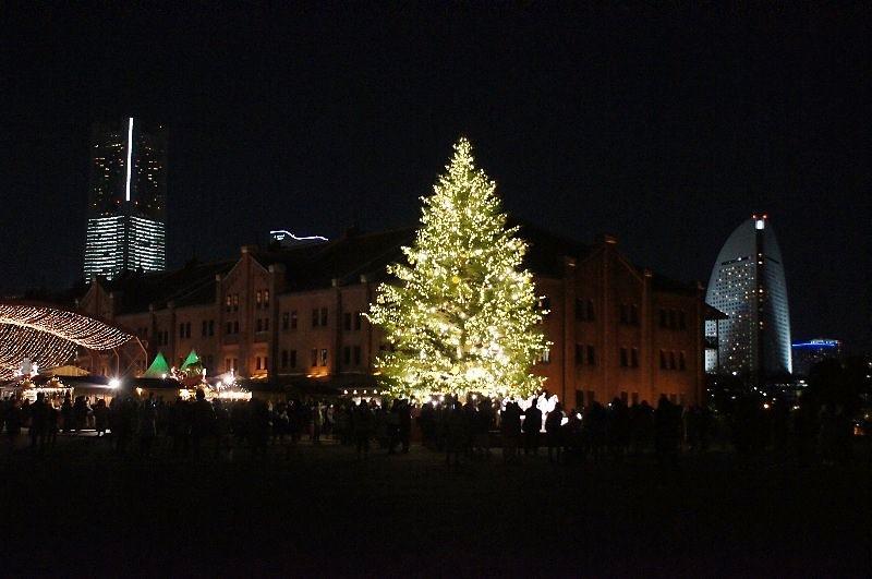 みなとみらいのクリスマスツリー_a0355365_12305613.jpg