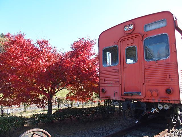 Maxで碓氷峠鉄道文化むらへ、帰りはSLぐんまよこかわ! (11/25:その2)_b0006870_20532180.jpg