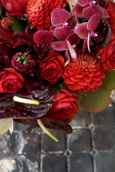 赤いお花たち_f0127281_15253991.jpg