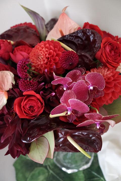 赤いお花たち_f0127281_15261237.jpg