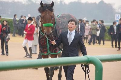 今年の3歳馬は強い!有馬記念はブラストワンピースがGI馬7頭を破りGI初制覇_b0015386_02463297.jpg