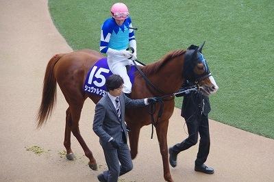 今年の3歳馬は強い!有馬記念はブラストワンピースがGI馬7頭を破りGI初制覇_b0015386_02472430.jpg