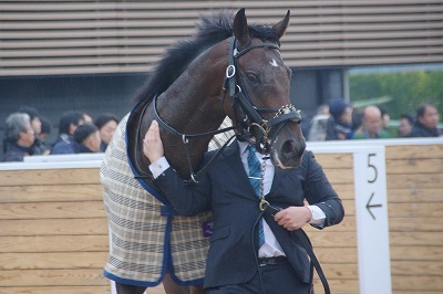 今年の3歳馬は強い!有馬記念はブラストワンピースがGI馬7頭を破りGI初制覇_b0015386_02473328.jpg
