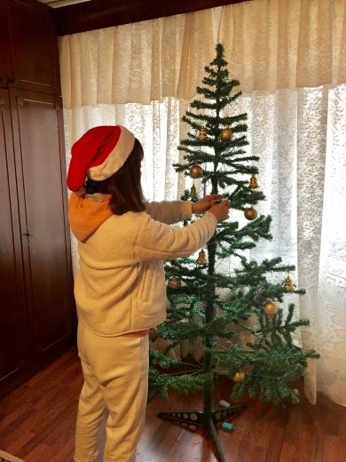 ルーマニアでのクリスマスイブ_a0213806_18533420.jpeg