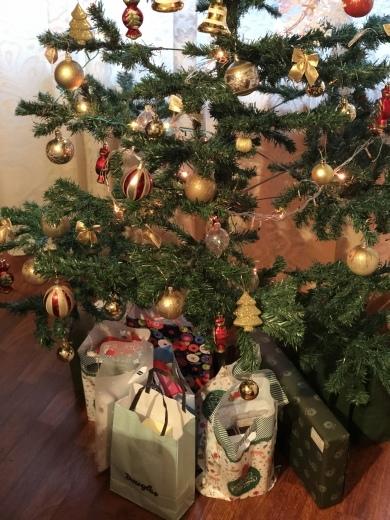 ルーマニアでのクリスマスイブ_a0213806_18552047.jpeg