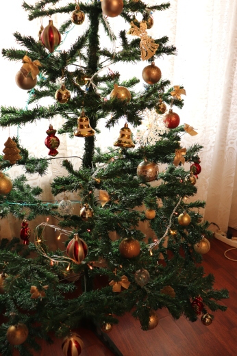 ルーマニアでのクリスマスイブ_a0213806_19000828.jpeg