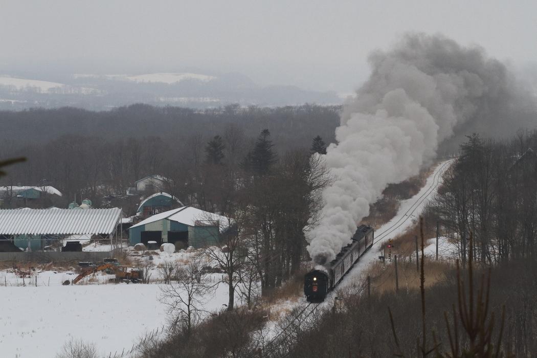 雪景色に逆三角形に立ち上る煙 - 2018年・釧網線 -_b0190710_22135599.jpg