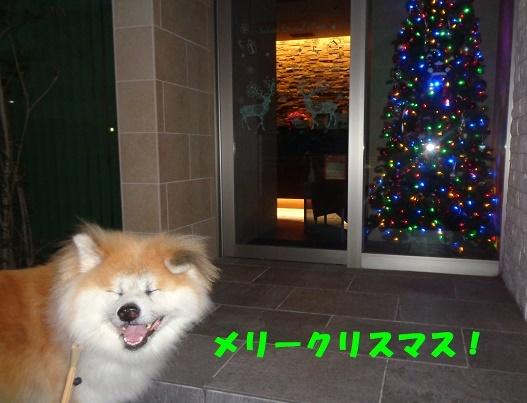f0121712_13472452.jpg