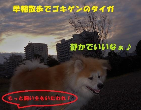f0121712_14321006.jpg