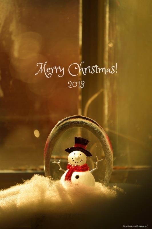 Merry Christmas♡_f0321522_11463700.jpg
