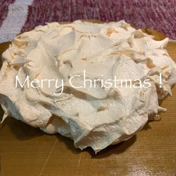 メリークリスマス_d0171830_11422209.jpg