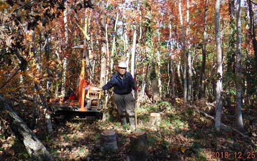 メルマガ:薪林業 (797号)_a0051539_21112595.png
