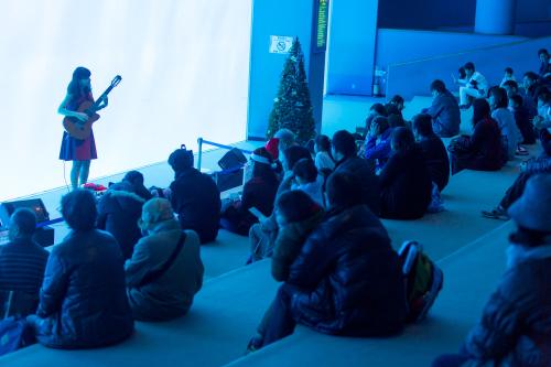 名古屋港水族館さんでの演奏、ありがとうございました。その1_f0373339_12380577.jpg