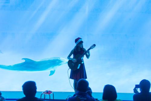 名古屋港水族館さんでの演奏、ありがとうございました。その1_f0373339_12414045.jpg