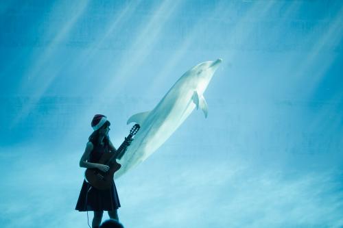 名古屋港水族館さんでの演奏、ありがとうございました。その1_f0373339_12414177.jpg