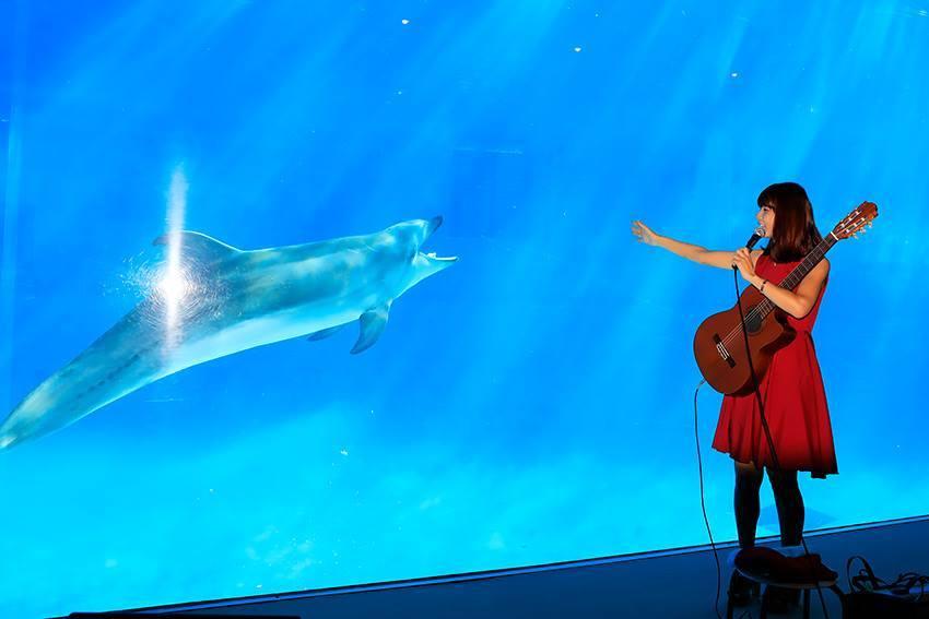 名古屋港水族館さんでの演奏、ありがとうございました。その1_f0373339_12463379.jpg