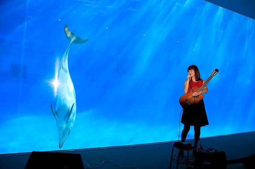 名古屋港水族館さんでの演奏、ありがとうございました。その1_f0373339_12464901.jpg