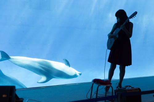 名古屋港水族館さんでの演奏、ありがとうございました。その1_f0373339_12464942.jpg