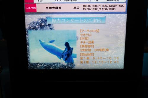 名古屋港水族館さんでの演奏、ありがとうございました。その2_f0373339_14230749.jpg