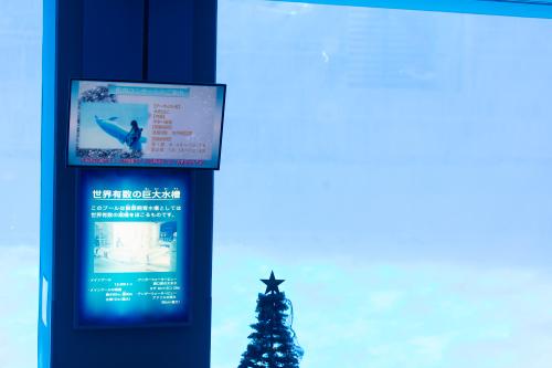 名古屋港水族館さんでの演奏、ありがとうございました。その2_f0373339_14230841.jpg