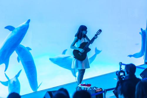 名古屋港水族館さんでの演奏、ありがとうございました。その2_f0373339_14265088.jpg