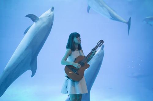 名古屋港水族館さんでの演奏、ありがとうございました。その2_f0373339_14265165.jpg