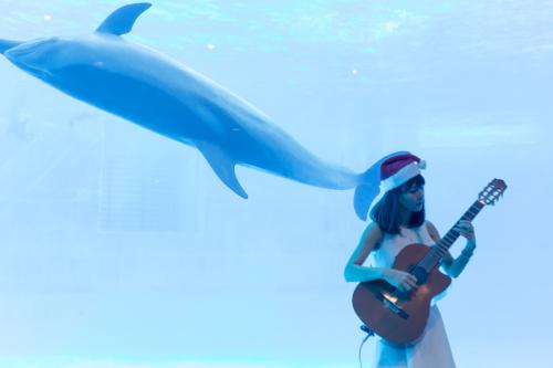 名古屋港水族館さんでの演奏、ありがとうございました。その2_f0373339_14265239.jpg