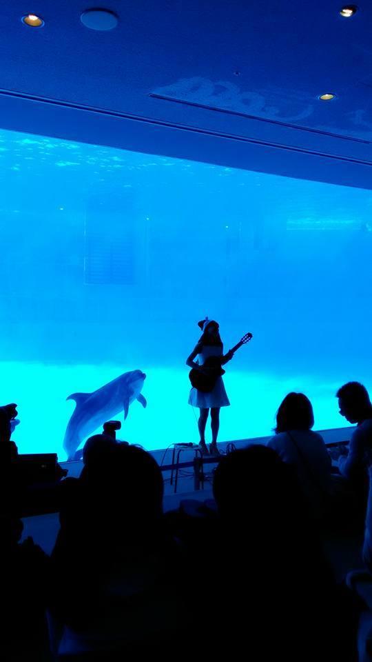 名古屋港水族館さんでの演奏、ありがとうございました。その2_f0373339_15061141.jpg