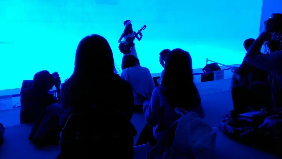 名古屋港水族館さんでの演奏、ありがとうございました。その2_f0373339_15061173.jpg
