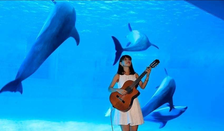名古屋港水族館さんでの演奏、ありがとうございました。その2_f0373339_22021061.jpg