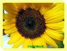 b0133147_14565210.jpg