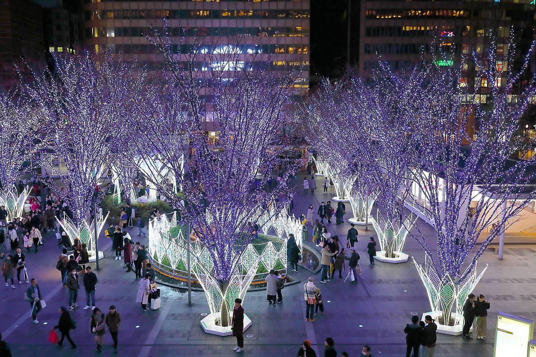 Merry Christmas_c0253556_05115770.jpg
