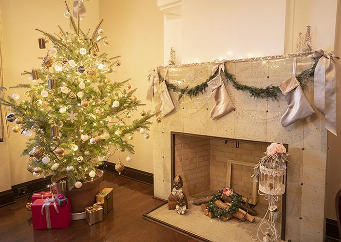 山手西洋館・世界のクリスマス2018・エリスマン邸_b0145398_15265591.jpg