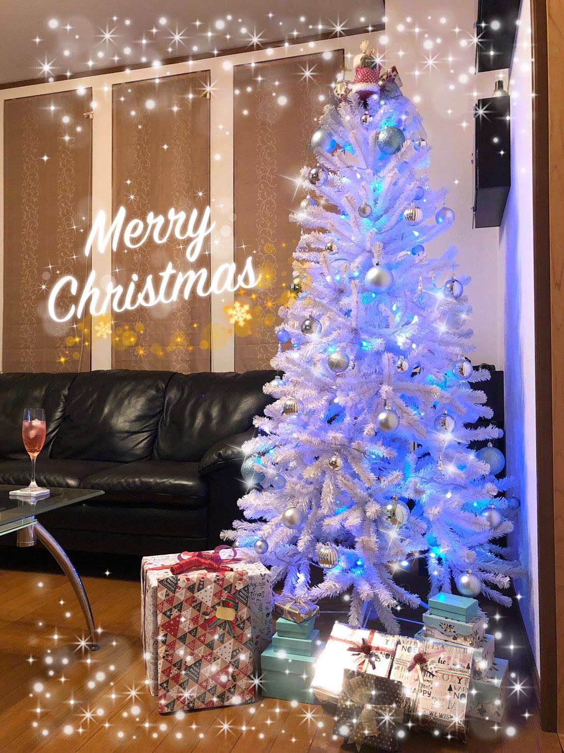 メリークリスマス♪_a0113003_14315709.jpg
