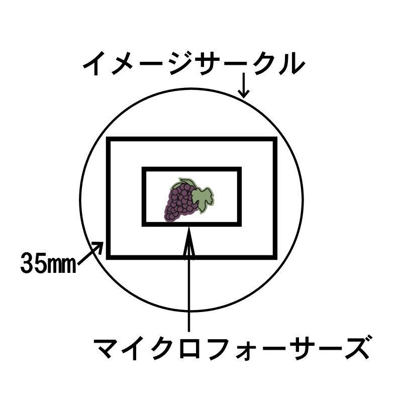 c0109827_19110106.jpg
