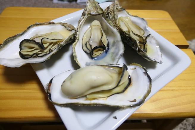 広島の牡蠣_d0389370_23400742.jpg