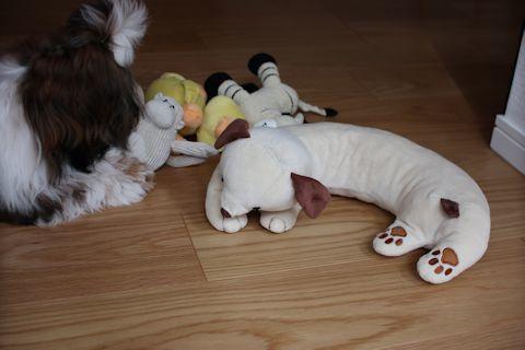 家の子自慢&おもちゃをお洗濯♪_c0090198_17483204.jpg