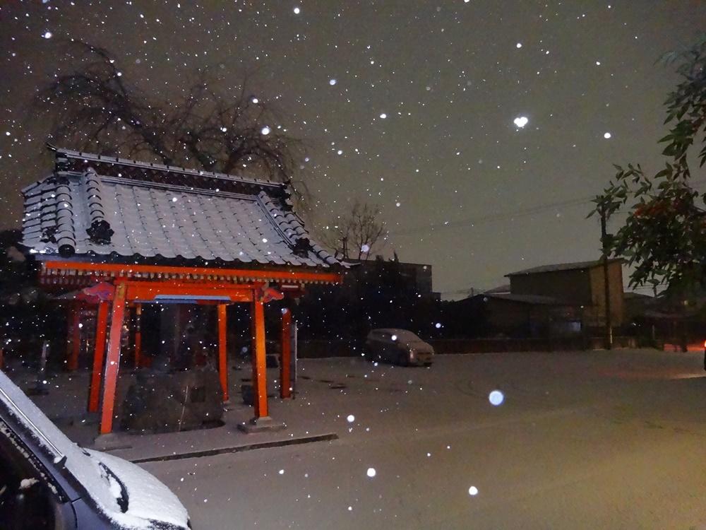 午後から本格的な雪降りに_c0111229_18401652.jpg