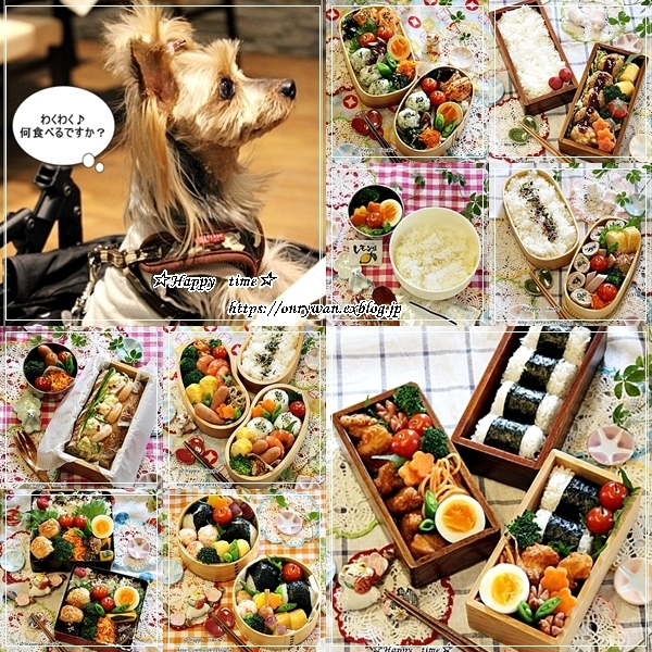 2018お弁当まとめ1月~4月と豚汁♪_f0348032_19371468.jpg